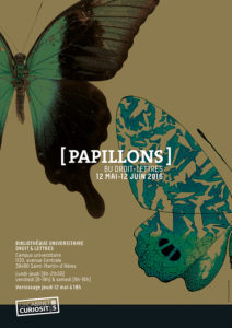 A3_[PAPILLONS]_web